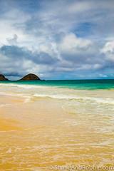 20160822(Canon EOS 6D)-00030 (ShaneAndRobbie) Tags: hawaii oahu usa america eastcoast windward kailua beach