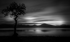 Loch Lomond (valdi-) Tags: mountains light tree water nikond7100 traveling blackandwhite scotland lochlomond