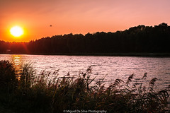 Amsterdamse Bos (Miguel Da Silva Photography) Tags: landscape water sunset amsterdam amsterdamse bos sun river canal sport stadium olympic netherlands field forest ske colors no tripod sony a900 project 52 weekly week theme
