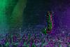 Contraste de color (Antonio Martínez Tomás) Tags: escolopendra invertebrado miriápodo lightpainting