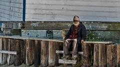 American dream San Francisco (DROSAN DEM) Tags: homeless vagabundo san francisco people gente cara rostro goden golden usa american dream face