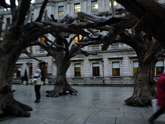 A Wood of Trees (failing_angel) Tags: 181116 london cityofwestminster royalacademy aiweiwei piccadilly tree treesections