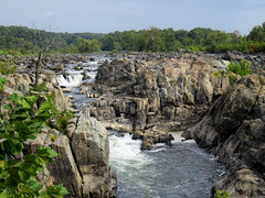 Falls at Great Falls Park, Fairfax County, Virginia (dckellyphoto) Tags: falls greatfalls river potomac virginia maryland greatfallspark rapids water rock rocky whitewater flow flowing mathergorge fairfaxcounty patowmackcanal greatfallsofthepotomacriver park beautyofwater