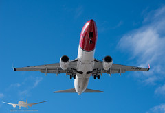 Norwegian - LN-DYQ - B737-800 (Aviation & Maritime) Tags: lndyq norwegianairshuttle norwegian norshuttle boeing boeing737 737 b737800 boeing737800 osl engm osloairportgardermoen oslolufthavngardermoen osloairport gardermoen norway