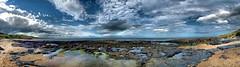Budle Point  panorama (tina negus) Tags: panorama budlepoint northumberland beach rocks sky nature landscape