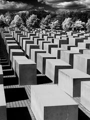 Holocaust memorial Berlin B&W (Johannes R.) Tags: world 2 bw white black berlin field lines contrast germany holocaust memorial war remember geometry olympus tourist line stele jew jews steles e420