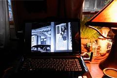 early summer (omoo) Tags: newyorkcity windows film movie apartment desk interior laptop westvillage dell earlysummer greenwichvillage 1951 japanesemovie japanesefilm yasujiroozu bakushu missiontablelamp roundoaktable postwarjapanesefilm osusearlysummer