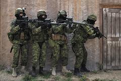 RIMPAC 2012 (Canadian Army | Armée canadienne) Tags: men horizontal army outdoors day jour weapon tropical extérieur homme armée arme mediumshot smallarms rimpac planmoyen rimpac2012 rimpac12 armelégère 120708ozz999004ca1
