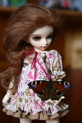 """IMG_1067 • <a style=""""font-size:0.8em;"""" href=""""http://www.flickr.com/photos/23793655@N06/7954814328/"""" target=""""_blank"""">View on Flickr</a>"""