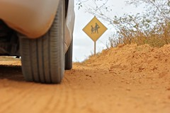 Dia 190 - 2 (Udayam R. Bassul) Tags: road minasgerais ford focus mg dirt estrada 365 terra almenara 365project chao