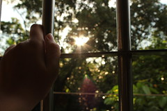 Behind the bars, winks the sun (Almost brilliant) Tags: sun sunlight yellow freedom golden bars shine hand bokeh sparkle jail behind wink captvity