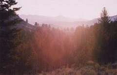 mountain spirit (scott w. h. young) Tags: light sun mountain love film forest 35mm woods spirit yellowstonenationalpark