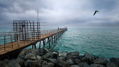 Fishing Bridge (khalid almasoud) Tags: leica bridge winter light sea fishing rocks all photographer cloudy 5 gull  days best rights kuwait khalid reserved dlux  icapture todays     greatphotographers   almasoud flickraward