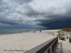 As the storm approaches (snoopydoobiedog~) Tags: blue sky beach nature clouds sand florida stormy august panasonic gulfcoast dmcfz35 dailynaturetnc12 lifetnc12
