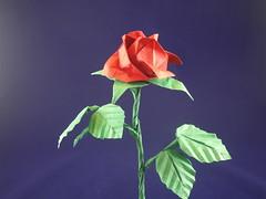 Rose (origami_de) Tags: origami papierfalten