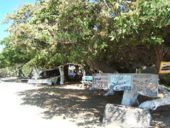 "Beach Bar in Isabella Galapagos • <a style=""font-size:0.8em;"" href=""http://www.flickr.com/photos/69210373@N08/8039456727/"" target=""_blank"">View on Flickr</a>"