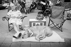 Nap Time (Russ Beinder) Tags: auto show street people canada car automobile downtown bc candid portcoquitlam tamronsp28mmf25