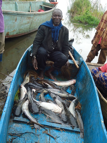 Fisherman in canoe with wild captured fish in Uganda. Photo by Ocaya H., 2011