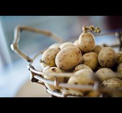 lanzones (My Inner Child) Tags: fruit southeastasia philippines lanzones lansiumdomesticum