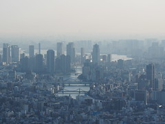 Tokyo Landscape #1 (Simon*N) Tags: city travel sunset sky urban cloud building tourism japan architecture night skyscraper landscape outdoors tokyo evening town bill haze shinjuku view capital illumination olympus aerial  tokyotower metropolis material nightsky nightscene gradation month       omd distant    highangle unmanned      subcenter   urbanized     em5 touristdestination        groupofbuildings