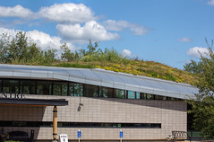 20160802-IMG_3532 the landscape above the library... (grammiev) Tags: building library livingroof clouds sky learningcenter greenroof