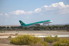 Aer Lingus FTE (19) (crgmry) Tags: aerlingus fte aerlingusfte airbusa320 a320 aeropuertodejerez jerez aeropuerto airport jerezairport flighttrainingeurope takeoff