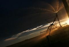 "Morgan County (Colorado) Road 2005, between MCR V/21 and MCR U.5, NE of Fort Morgan 4018'10"" N 10345'47"" W - PLDS1934 (Paul L Dineen) Tags: morgancounty colorado sprinkler cropsprinkler sun sunset water farm rural clouds landscape coloradophotography centerpivotsprinkler pinnacle bbb"