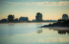 A soft tone sunrise (Ingeborg Ruyken) Tags: 2016 500pxs empel maas meuse bomen dawn dropbox flickr morning natuurfotografie ochtend river rivier summer sunrise trees water zomer zonsopkomst