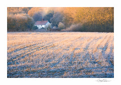 Cottage in the Country (George-Edwards) Tags: landscape cottage house farm farmhouse fields crop winter frost snow mist sunrise dawn morning seasons trees hedgerow wildlife nature countryside rural berkshire england georgeedwards photography