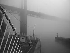 Brume sur le pont - mist on deck (Panafloma) Tags: bw tancarville pontdetancarville pont brume géométrie eau grille