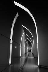 Light in the Black (max tuguese) Tags: passageway budapest airport light black white bw blackwhite maxtuguese canon monochrome bianco nero mono architect