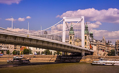 Elisabeth Bridge (Erzsbet hd), Budapest (micebook) Tags: hungary budapest europe buildings local town city bridge tower culture synagoge castle architecture centre tourism ruins soldiers streets roads railings sky water