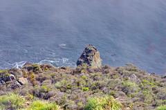 California Big Sur 90 the Fog on the coast (paspog) Tags: california cliff usa fog unitedstatesofamerica bigsur pacificocean falaise brouillard ocanpacifique