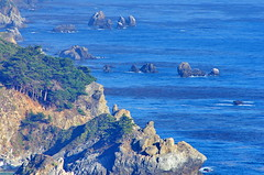 California Big Sur 160 (paspog) Tags: california cliff usa fog unitedstatesofamerica bigsur pacificocean falaise brouillard ocanpacifique