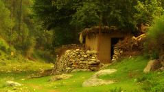 A countryside construction (Murtaza Mahmud) Tags: trip travel pakistan vacation sky plants house plant mountains tree green nature kew trekking canon 50mm stream valley photowalk awayday colorsofnature sighseeing nilanbhotu scapesky