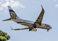 Alaska Airlines, N615AS, 2000 Boeing B737-790, MSN 30344, LN 472 (Gene Delaney) Tags: alaskaairlines n615as 2000boeingb737790 msn30344 ln472