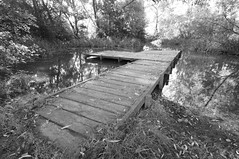 Pond (mark surry) Tags: park pond jetty country belhus tamron1024