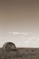 Hay bale in Sepia (Joe-Lynn Design) Tags: summer canada field winnipeg farm country manitoba prairie