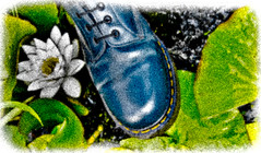 Navy Blue Doctor Martens, heavy grain. (CWhatPhotos) Tags: grainy grain lilly pond garden cwhatphotos artist artistic olympus epl1 four thirds digital camera 1442mm zoom lens 8 hole doc docs doctor marten martens air wair airwair bouncing soles original eos close up boots boot drmartens docmartens dms adobe lightroom cushion sole yellow stitching yellowstitching foot photo photos picture pictures with that have dr comfort cushioned wear feet foto fotos which contain footwear photography light navy blue z welt vdmsole vdm drmarten men mens flickr