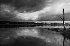 Mariebergsviken in mono (- David Olsson -) Tags: old blackandwhite bw lake reflection tree reed water monochrome clouds reflections landscape mono mirror boat nikon cloudy sweden jetty tripod september karlstad filter mirrored silvery grayscale grad motorboat hitech vr vnern 2012 darksky dx wor vrmland moored 1635mm lakescape gnd mariebergsviken starktree orrholmen d5000 scenicsnotjustlandscapes davidolsson 1635vr 12soft