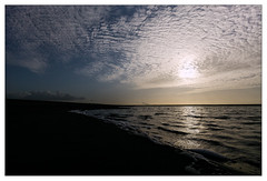800 DSC04149_CF PP CV UW Heliar 12_5.6 raw conv (leo.roos) Tags: nex5n voigtlanderultrawideheliar1256 cv cosina zandmotor westland beach strand zee sea m39 darosa leoroos