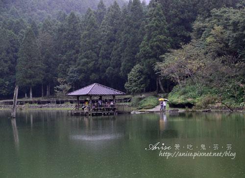 明池森林遊樂區020.jpg