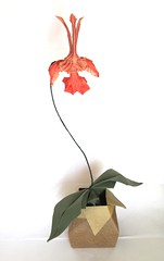 Psychopsis 1.1 (folding~well) Tags: orchid paper origami oncidium folding psychopsis