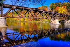Newaygo State Park - Explore! (MichellePhotos2) Tags: park bridge autumn trees reflection fall water leaves yellow river maple nikon michigan foliage explore newaygo muskegonriver railroadbrige newaygostatepark d800e nikond800e newaygorailroadbridge