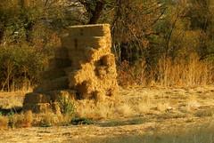 Hay Stack (dearing116) Tags: autumn october idaho hay bales hiddensprings