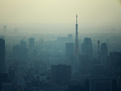 Tokyo Landscape #5. Foggy Tokyo Tower. (Simon*N) Tags: city travel sunset sky urban cloud color building tourism japan architecture skyscraper landscape outdoors tokyo evening town bill haze shinjuku view capital illumination landmark olympus aerial  tokyotower metropolis material gradation         omd distant    highangle unmanned    subcenter    urbanized     em5 touristdestination         groupofbuildings