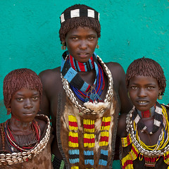 Hamer girls, Turmi, Ethiopia (Eric Lafforgue) Tags: africa portrait people color wall square outside outdoors photography necklace beads day culture shell tribal bead omovalley tradition ethiopia tribe ethnic groupofpeople hamar perle headband tassel hamer confidence traditionalculture hornofafrica ethnology omo eastafrica animalskin greenbackground traditionalclothing realpeople colorimage lookingatcamera coloredbackground waistup cauri redochre dimeka turmi africanethnicity pastoralist semidress snnpr 8097 southernnationsnationalitiesandpeoplesregion hamerbenaworeda ethiopianethnicity