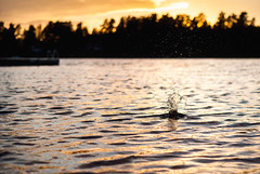 Day 276 - Sunset Splash (dennisdasfoto) Tags: sunset lake water oneaday project see wasser sonnenuntergang dof sundown sweden bokeh schweden depthoffield photoaday sverige 365 splash boke vatten vnern pictureaday solnedgng sj 366 kristinehamn plask 365days 3651 insj dt50mmf18sam