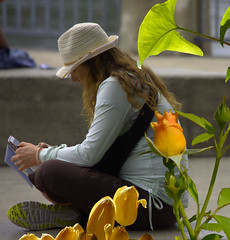 Concentration (swong95765) Tags: flowers woman hat wall female dof phone device concentrate