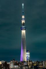 Purple Tokyo Skytree ([futilitarian]) Tags: sumidaku tōkyōto japan jp tokyo skytree asakusa tower broadcasttower skyline city 東京 日本 浅草 東京スカイツリ miyabi 雅